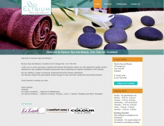 web-design-nz-infotech-elysium