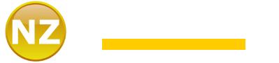 NZ Infotech Services- Web design and development company